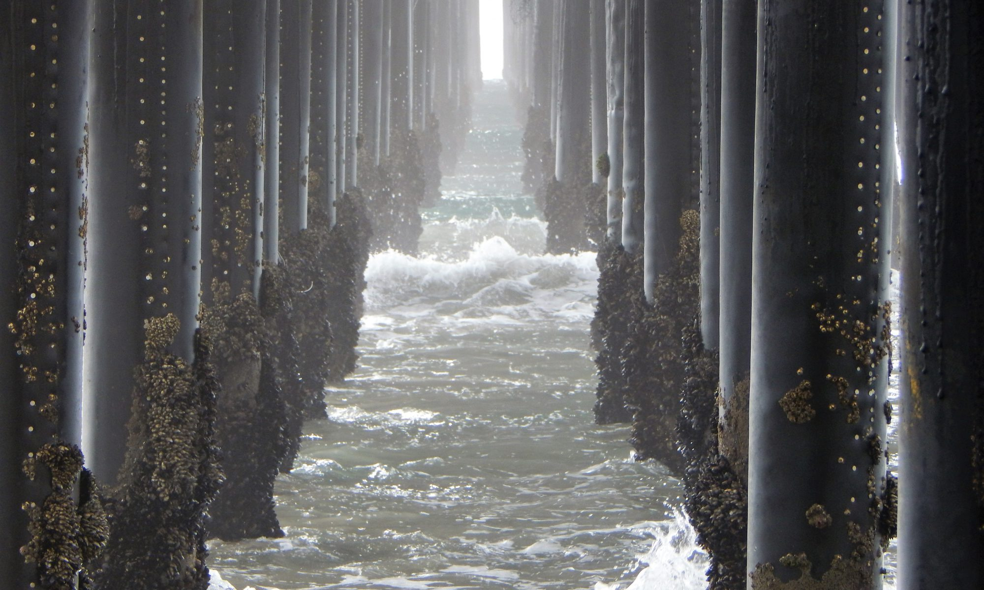 San Diego Fishing Piers