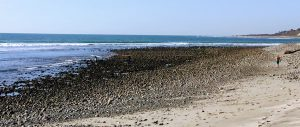 San Onofre State Beach Rocky Shore