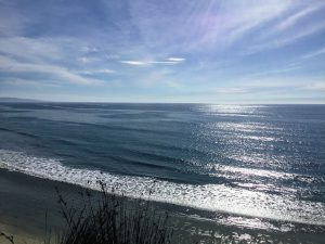 Swami's Ocean View