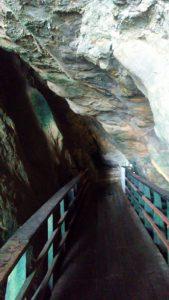 Inside Sunny Jim Cave La Jolla