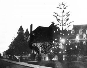 hotel del coronado christmas tree 1904