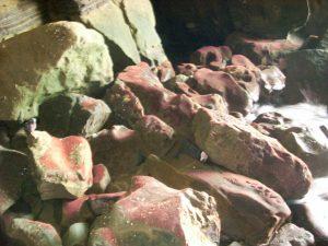 Inside Sunny Jim Cave La Jolla coast walk