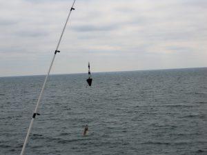 Fishing Pole San Diego Fishing Piers