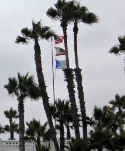 Beginning Oceanside Pier Palm Trees Flags