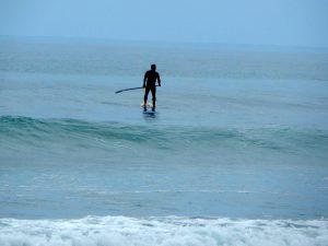 Paddleboarder Dogpatch Beach