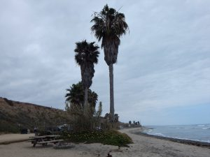 San Onofre parking lot.