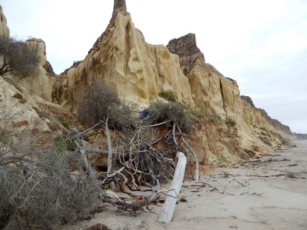 Trails Beach San Onofre State Beach