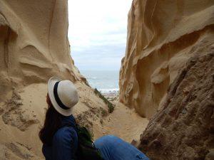 San Onofre Bluffs Crevasse Trails Beach