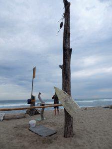 Surfboard Holder Lower Trestles Beach