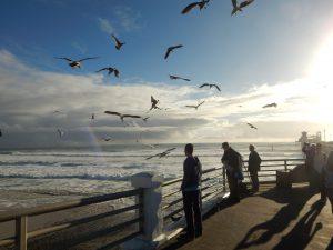 Oceanside Pier Oceanside Beach CA