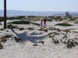 Coronado Dunes Coronado Island San Diego CA