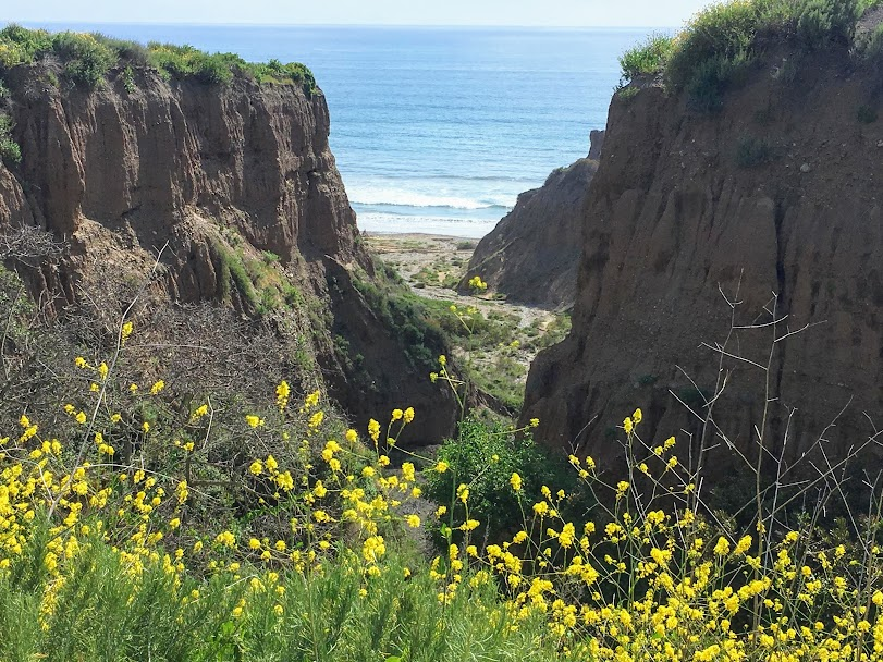 San Onofre Bluffs State Campground