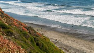 Beacon's Beach Beaches of Encinitas