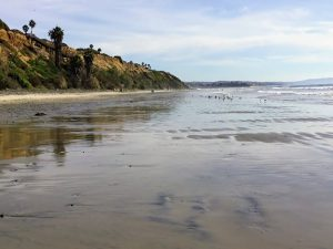 South View San Elijo bluffs wet sand bluffs