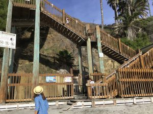 Swami's Beach Staircase Beaches of Encinitas