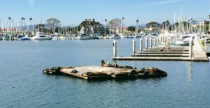 1540 North Oceanside Harbor Manfred Marine unlimited