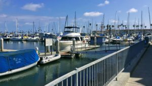 1900 N Oceanside Harbor San Diego whale watching tours