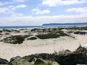 Coronado Beach Beaches of San Diego County