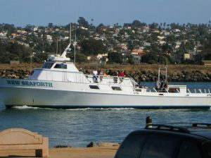 New Seaforth Boat San Diego Whale Watching Tours