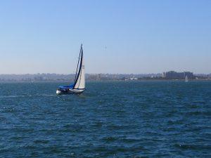 Sailboat San Diego Bay