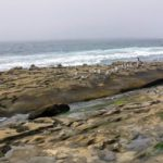Hospital Beach Beaches of San Diego County