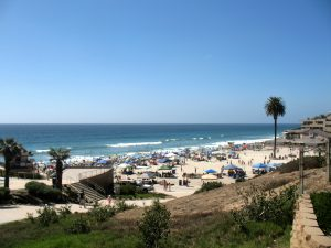 Moonlight State Beach Beaches of Encinitas