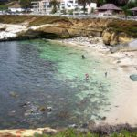 La Jolla Cove clear shallow water people