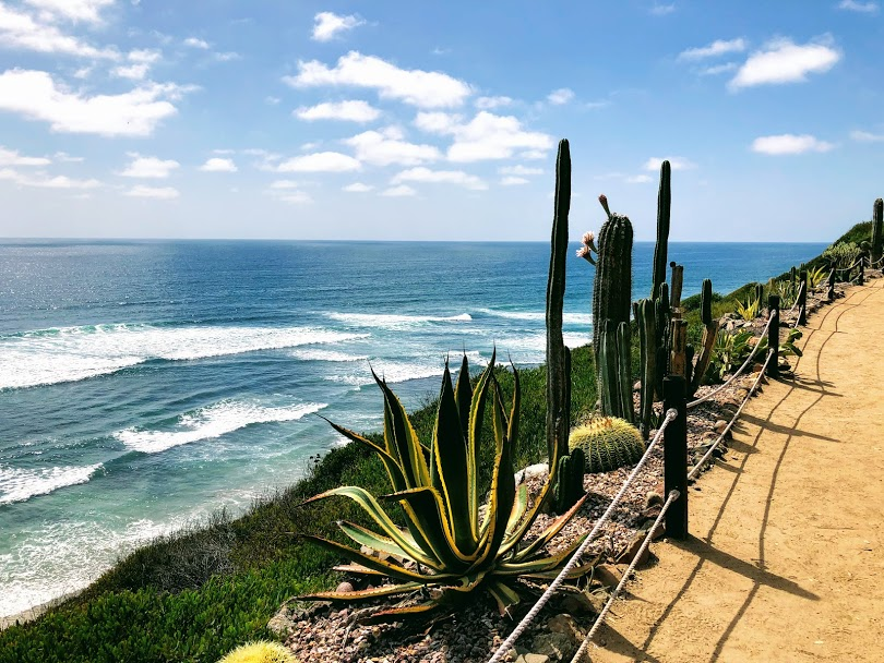 meditation gardens encinitas beaches