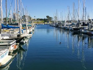 North Oceanside Harbor San Diego whale watching tours