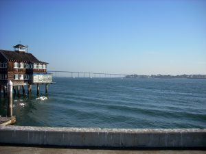 san-diego-whale-watching-tours