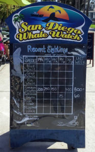 San Diego Whale Watch Sign Mission Bay