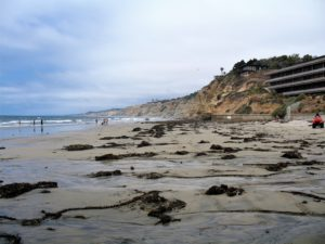 Scripps Beach beaches of San Diego County