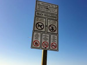 Oceanside Beaches Regulation Sign