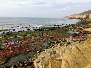 Cabrillo National Monument tidepools