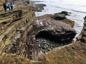 tidal bluffs exposed mid intertidal zone