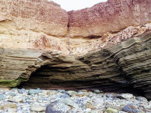 Upper Intertidal Zone Bluffs