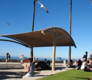 Kellogg Park J J whale la jolla shores beach