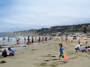 La Jolla Shores Beach View child running people by water