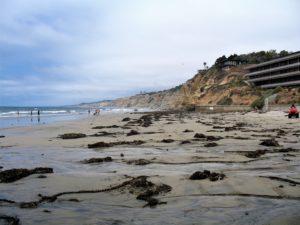 Scripps Beach After Pier La Jolla Shores Beach