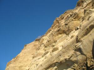 Scripps Bluffs la jolla shores beach