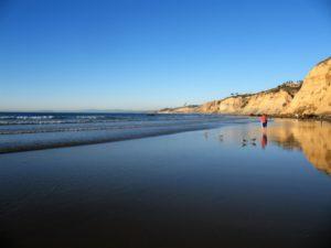 Scripps Coastal Reserve Man la jolla shores beach