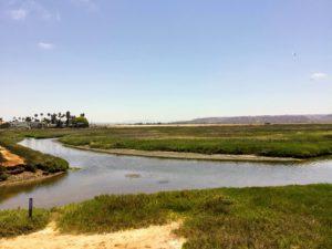 Tijuana Estuary San Diego Lagoons