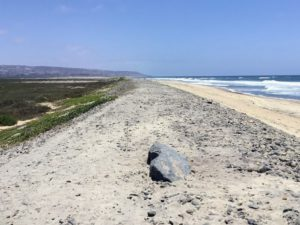 Tijuana Slough Beaches of San Diego County