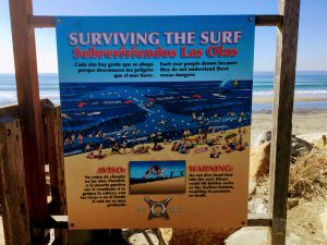 Surviving the Surf Poster torrey pines state beach