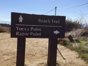 Beach Trail Yucca Point Razor Point Signs