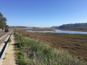 Los Penasquitos Lagoon outside trail