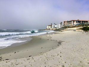 Marine Street Beach La Jolla