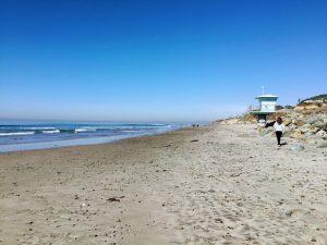 North Torrey Pines State Beach San Diego Beach