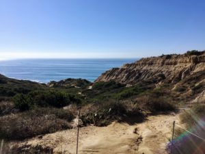 Ocean View Torrey Pines State Natural Reserve
