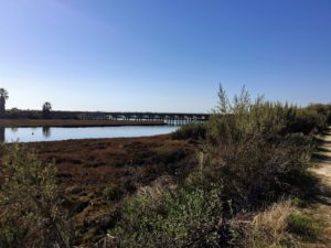 Railroad Tracks over Los Penasquitos Lagoon